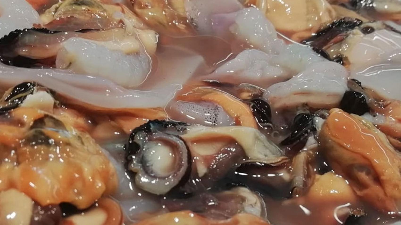 Molluschi sgusciati